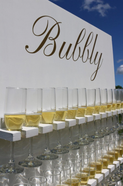 Custom Bubbly Champagne Wall (image 2/4)