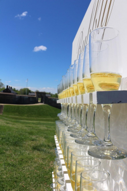Custom Bubbly Champagne Wall (image 4/4)