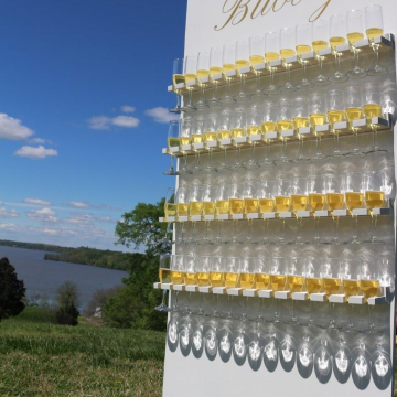Custom Bubbly Champagne Wall (image 1/4)