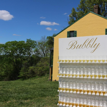 Custom Bubbly Champagne Wall (image 3/4)
